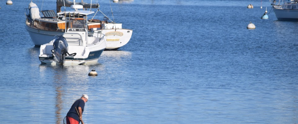 Crafting a clam plan and more initiative seeks to develop a a long range shellfishing plan for the state is under development tim wood photo malvernweather Gallery