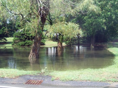 The storm turned this Rock Harbor Road lawn into a lagoon.  ED MARONEY PHOTO