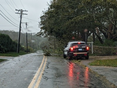 A downed limb on Old Harbor Road, Chatham, was quickly cleared by town highway crews.  ALAN POLLOCK PHOTO